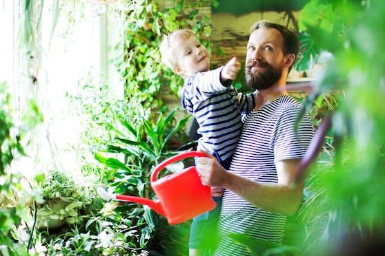 """Auch Männern kann man mit """"maskulinen"""" Pflanzen durchaus eine Freude machen."""