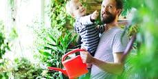 Blumen zum Vatertag? Klar - es gibt maskuline Pflanzen
