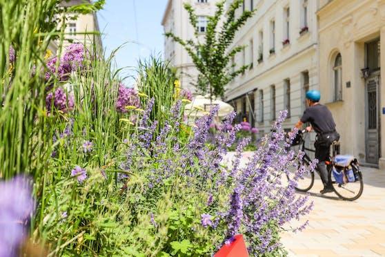 Vier Ideen konnten sich beim Ideenwettbewerb der Stadt bei den Wienern durchsetzen. Nun gehen die Siegerprojekte in die Umsetzungsphase.