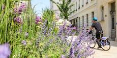 Diese vier Projekte machen Wiens Grätzl bald grüner