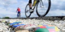 Schlangen-Schreck sorgt für E-Bike-Crash in Kärnten