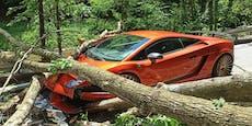 Baum stürzt um, begräbt Lamborghini unter sich