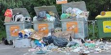 Grünes Erholungsgebiet in Wien geht im Müll unter