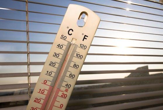 Wenn draußen die Temperaturen die 30 Grad-Marke erreichen, sollte der Wohnraum möglichst kühl gehalten werden.