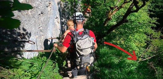 Der Bergsteiger konnte sich gerade noch an einer Wurzel festhalten.