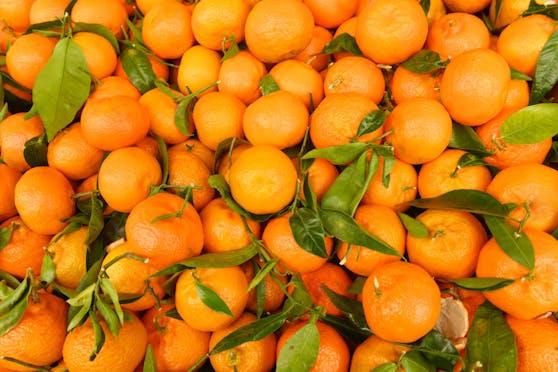 Die vier Männer führten in der Region der Stadt Sparta einen Betrieb als Orangenpflücker und boten lokalen Bauern ihre Dienste an.