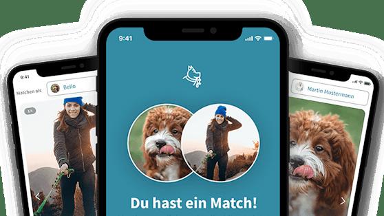 Zwei Jungunternehmer entwickelten eine tolle App - rund um den Hund.