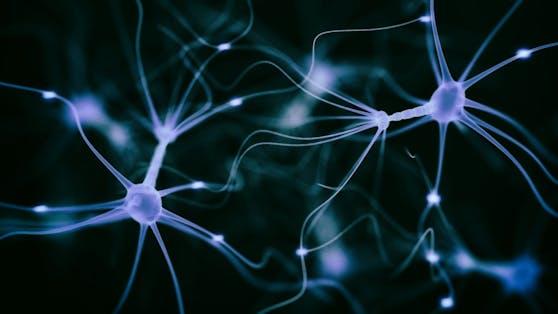 Bei Multiple Skleroseentzünden sich Nervenstrukturen.