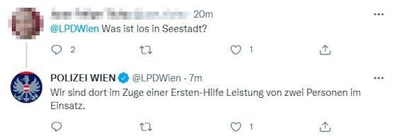 Auch die Wiener Polizei war im Einsatz.