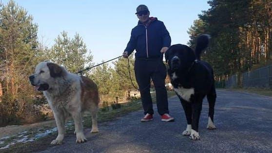"""Der arme """"Tosia"""" überlebte seinen Besuch beim Hundefriseur nicht"""
