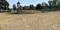 Hitzewelle verwandelt Wiener Park in staubige Steppe