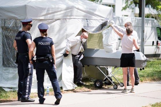 Passanten fanden Samstagfrüh, 26. Juni 2021, in der Donaustadt das leblose Mädchen auf einer Grünfläche auf.