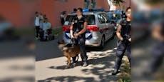 Teenies prügeln Polizisten, Beamte drücken sie zu Boden