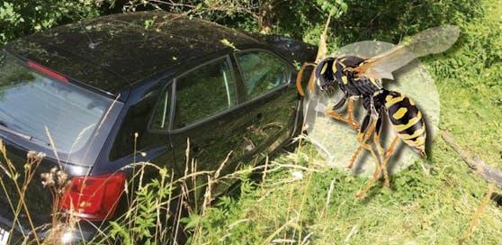Die Lenkerin war durch die Wespe derart abgelenkt, dass sie gegen einen Baum krachte.