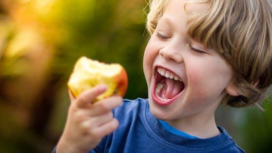 Lieber Obst statt Fruchtpüree:Kauen ist wichtig, weil es die Muskeln im Mund fördert, was schlussendlich die Sprachentwicklung unterstützt.