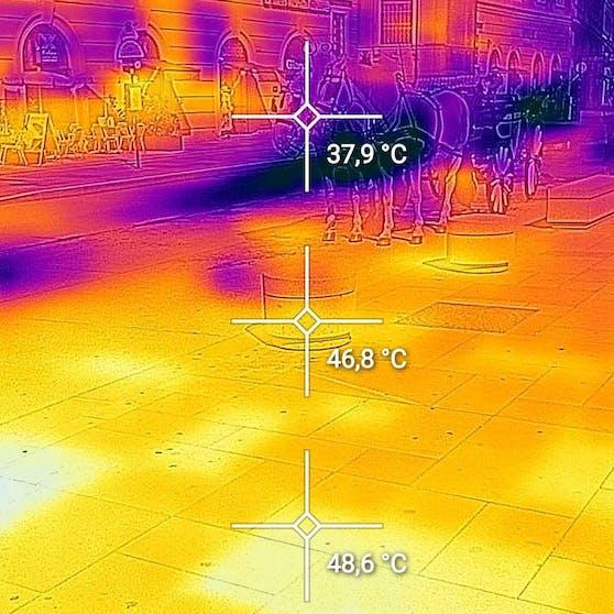 Während das ZMAG-Thermometer im Schatten noch 32 Grad anzeigt, hat sich der Asphalt am Stephansplatz unter den Pferdehufen auf 49 Grad aufgeheizt, die Luft ist fast 38 Grad heiß.