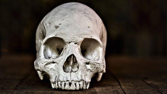 Beim Zoll in Aachen fanden Zollbeamte bei einer Paketkontrolle einen Schädel. (Symbolbild)