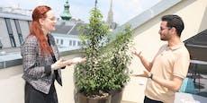 Causa Karlsplatz: Junger Grüner will Polizei entwaffnen