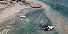 Mega-Schleimteppich verseucht das Mittelmeer