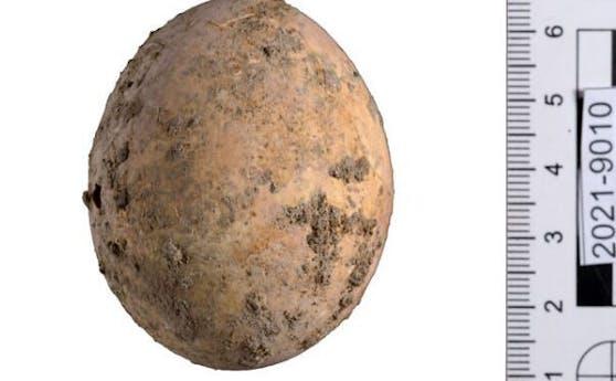 Gut erhalten für 1000 Jahre: Das gefundene Hühner-Ei aus Javne.