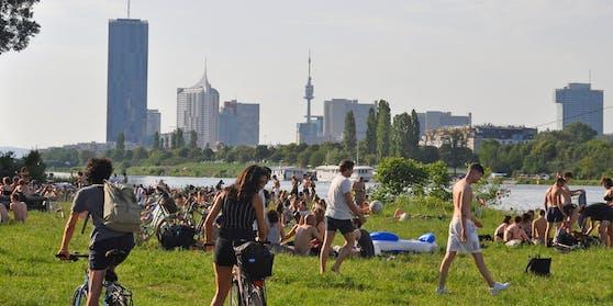 Voller Badeplatz auf der Wiener Donauinsel, Wien. Symbolbild
