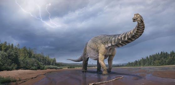Dieser Dinosaurier war 30 Meter lang und sechs Meter hoch. Jetzt rechnen die Forscher mit einem noch größeren Fund.