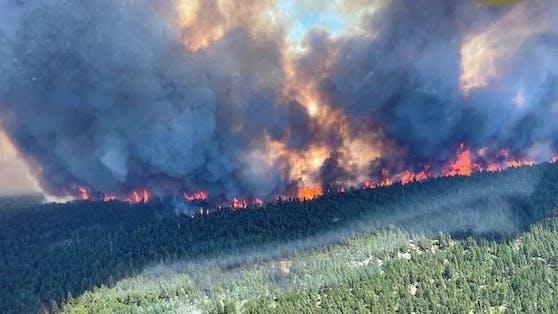 In Kanada haben die Menschen nach der Rekordhitze jetzt auch mit Waldbränden zu kämpfen.