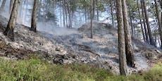 Einsatz nach Waldbrand in Gutenstein noch nicht beendet