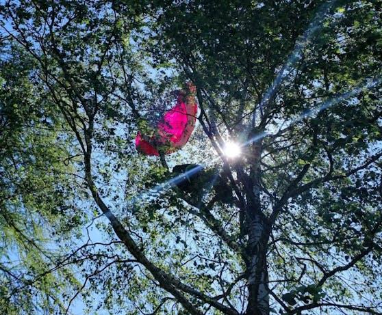In zehn Metern Höhe hing die Frau im Baum fest.