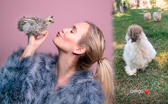 Youtuberin Lisa Sophie Thoma zieht Seidenhühner groß. Eines davon wuchs bei ihr zu Hause auf und hört auf den Namen Gyros.