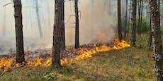Wieder Großeinsatz bei Brand im Föhrenwald