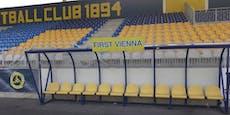 Kultklub Vienna will bis 2026 in die Bundesliga
