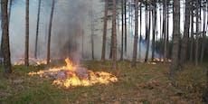 """""""Brand aus"""" nach Waldbrand in St. Egyden"""