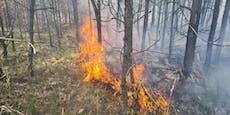 Hunderte kämpfen gegen Waldbrand in Niederösterreich