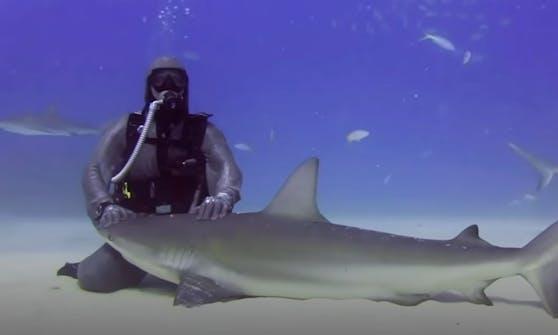 Höhlentaucherin Cristina Zenato entfernte 300 Angelhaken aus Haien. Nun wird sie geliebt.