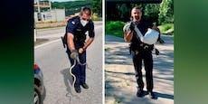 Polizist rettete in vier Wochen vier Tiere