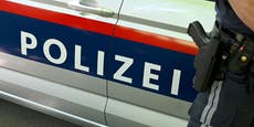 Turbulente Nacht: Vier Festnahmen im Wiener Stadtgebiet